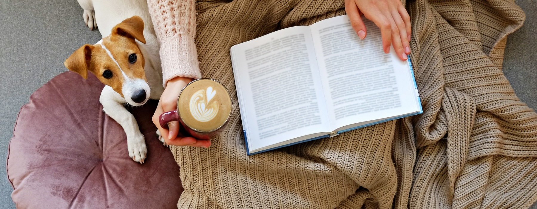 Person reading book with coffee and dog